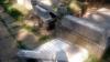 Act de vandalism fără precedent! Peste 40 de monumente din două cimitire AU FOST PROFANATE