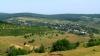 De ce Moldova are nevoie URGENTĂ de a mări suprafaţa pădurilor şi a perdelelor forestiere