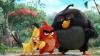 Box Office-ul american: Topul filmelor cu cele mai mari încasări în weekend
