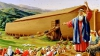 Se pregăteşte de potop? Un american construiește Arca lui Noe 2 (VIDEO)