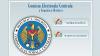 Cetățenii moldoveni din străinătate se pot înregistra on-line pentru alegerile prezidențiale