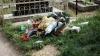 Tone de deșeuri. Cimitirele și parcurile din Capitală, transformate în gropi de gunoi