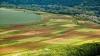 VEȘTI BUNE pentru agricultorii moldoveni. Ce bonusuri prevede un nou regulament de subvenționare
