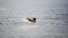 CUTREMURĂTOR! Un copil, găsit plutind pe apă. IMAGINEA TULBURĂTOARE face înconjurul lumii