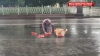 Jucăriile sexuale au creat HAOS în traficul din Moscova. Isprava unui şofer (FOTO/VIDEO)