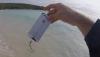 În Australia, peştele trage bine la iPhone. 5 KG! (VIDEO)
