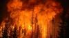 Foc fără sfârşit. INCENDIILE de pădure continuă să facă ravagii în Canada şi estul Siberiei