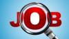 Eşti în căutarea un job? 11.000 de locuri de muncă sunt vacante în ţara noastră