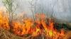 Incendiile de vegetație se extind în estul Rusiei. Peste 10.000 de hectare au fost pârjolite (VIDEO)
