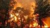 Incendiile de vegetație pârjolesc Zabaikalie! Localnicii fug disperaţi din calea focului dezlănţuit