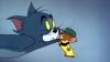 """Acuzaţii INCREDIBILE: """"Tom şi Jerry"""", RESPONSABILI DE VIOLENŢELE din Orientul Mijlociu"""