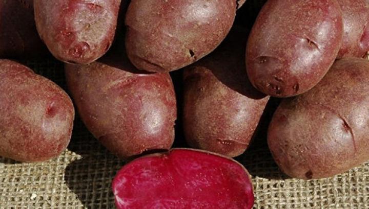 S-au inventat cartofii roşii pe dinăutru. Savanţii americani spun la ce sunt buni