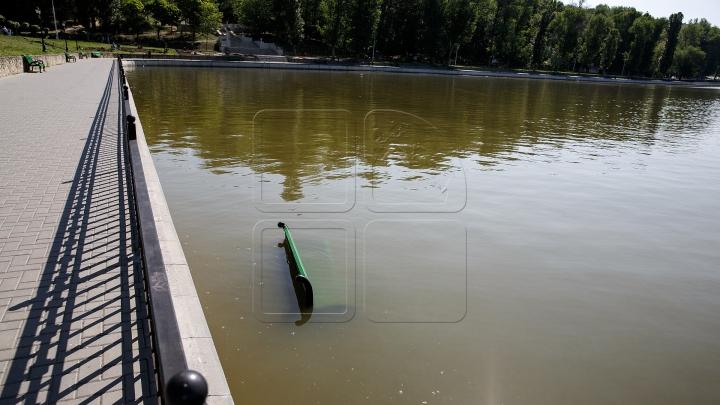 NESIMȚIRE CURATĂ! Ce au facut niște oameni cu băncile din parcul de la Valea Morilor (FOTO)