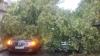DOSAR PENAL! Procuratura caută VINOVAŢII de prăbuşirea copacilor în Capitală