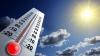 Caniculă record în SUA: 49 de grade în termometre şi patru victime