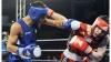 Lotul naţional de box, la ultimul turneu de calificare la Olimpiada de la Rio. Cum decurg pregătirile