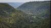 Nu va mai fi permis în Moldova. Ministerul Mediului a interzis arenda pădurilor