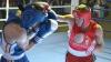 Şcoala de box din Grimăncăuţi. Boxeri din Tunisia şi România se află la cantonament