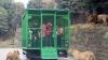 Nicăieri în lume NU se mai petrece ASTA! Grădină Zoologică unde oameniii sunt ţinuţi în cuşcă (FOTO)