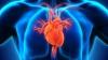 ÎNGRIJORĂTOR! Singurătatea AFECTEAZĂ GRAV inima şi arterele