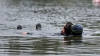 TRAGEDIE LA SCĂLDAT. Un bărbat s-a înecat în lacul Valea Morilor din Capitală
