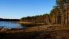 TRAGEDIE pe un lac din Rusia! Cel puţin zece copii au murit după ce două bărci s-au răsturnat (VIDEO)
