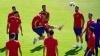 EURO 2016. Zece jucători de la naţionala Spaniei au fost supuşi unui test antidoping