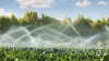 Veste bună pentru producătorii agricoli! Irigarea terenurilor mai accesibilă iar documentaţia - mai ieftină