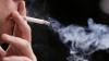 Consilierul francez nu a fost amendat pentru fumatul în parc. Declaraţia şefului INP