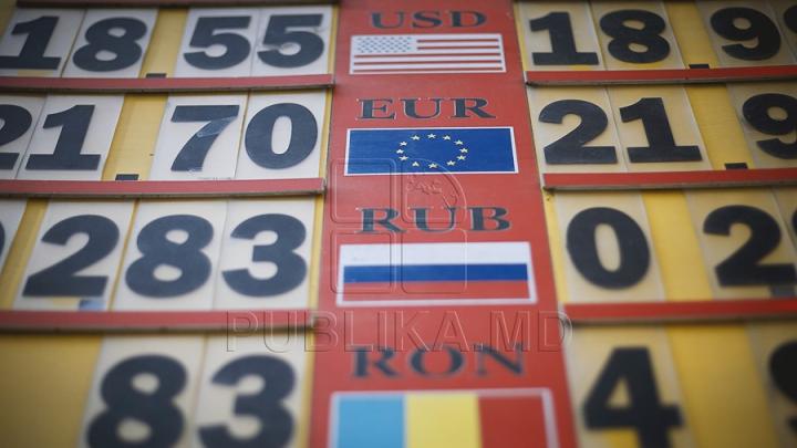 CURS VALUTAR 1 Iunie: Leul se apreciază în raport cu moneda unică europeană