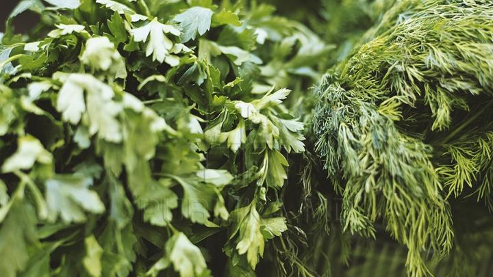 BINE DE ŞTIUT! Ierburi aromate verzi sau uscate? Află când să le folosești și cum