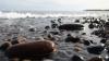 PERICOL MORTAL! O creatură apărută din spuma mării i-a băgat în sperieţi pe turişti (VIDEO)