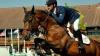 COMPETIŢIE DE HIPISM în Capitală. 20 de jochei şi caii lor şi-au demonstrat măiestria
