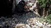 O clădire istorică din Odesa s-a prăbuşit. Printre dărâmături s-ar putea afla oameni