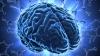#Life Style: Creierul este conectat la sistemul imunitar