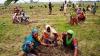 DEMN DE LAUDĂ! India a plantat 50 de milioane de copaci în doar 24 de ore