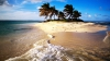 MOMENTE DE GROAZĂ! Toţi au intrat în PANICĂ când el şi-a făcut apariţia pe plajă (VIDEO)
