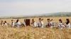 """Moldovan National Youth Orchestra"" a dat start ediţiei concertelor de vară"