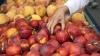 Află adevărul despre nectarine. Marele secret al acestor fructe