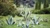 METEO 8 iulie. Cer predominant senin, fără precipitații. Care vor fi maximele termice