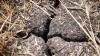 AVERTISMENT METEO! Cod Galben de secetă pentru toată ţara