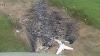 A fost găsit avionul PRĂBUŞIT în Irkutsk. Nimeni din membrii echipajului nu a supraveţuit