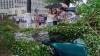 PRĂPĂD la Minsk. O furtună a provocat zeci de accidente rutiere și a avariat avioane (VIDEO)