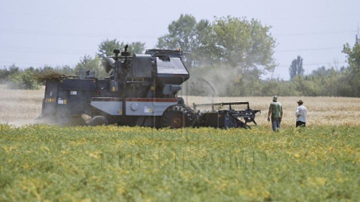 Peste 34 de mii de agricultori din România, care au avut de suferit în urma secetei, vor primi ajutor de la stat