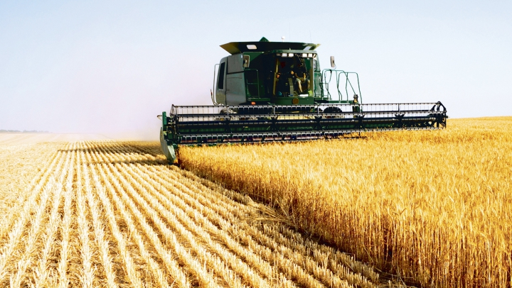 Fermierii moldoveni vor fi susținuți de guvernul Japoniei, care va aloca circa 19 milioane de dolari
