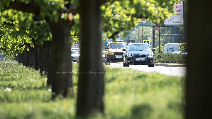 MISTER ÎN TRAFIC! Ce a apărut pe drumul spre Stăuceni (VIDEO)