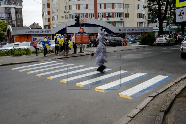Zebră 3D în Capitală! Şoferii şi pietonii au PĂRERI DIFERITE faţă de marcajul rutier (FOTOREPORT)