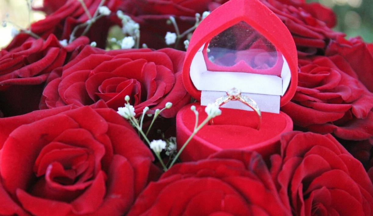 Цветы, букет цветов для предложения руки и сердца фото