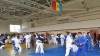 """Judo de sărbători! 90 de judocani vor evolua la""""Cupa Independenţei"""" de la Chişinău"""
