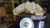 Cea mai mare perlă din lume, în valoare de 100 de milioane de dolari, va fi expusă în Filipine